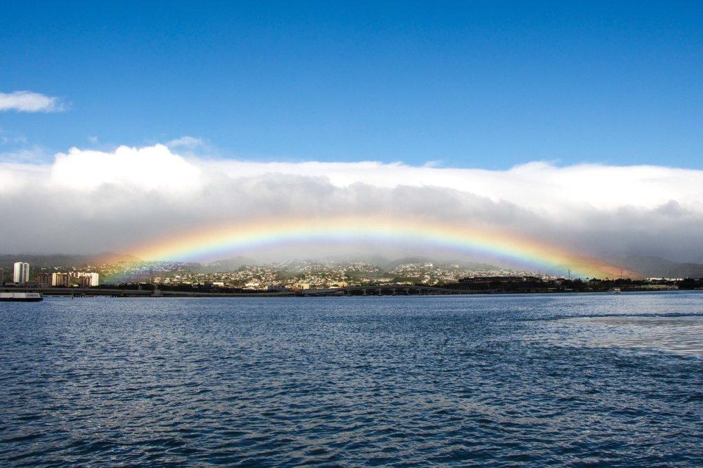 自然の中で架け橋となる虹