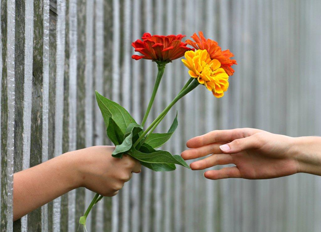 お花を手渡している