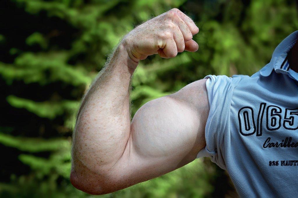 筋肉を強調している